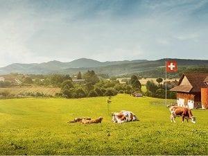 Migros concours Suisse